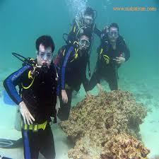 الغوص في بحر كيش