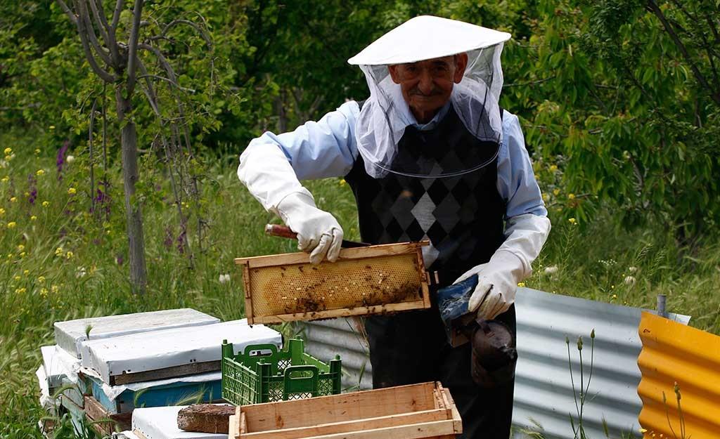 العسل المفضل من إيران سیاحت ایران علاج فی ایران